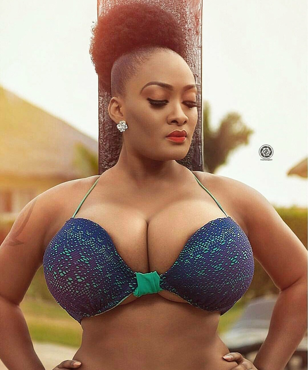 busty african women nudes